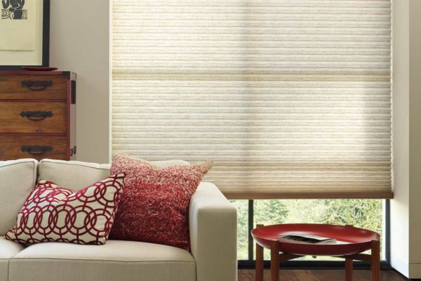 window-blinds-living-room